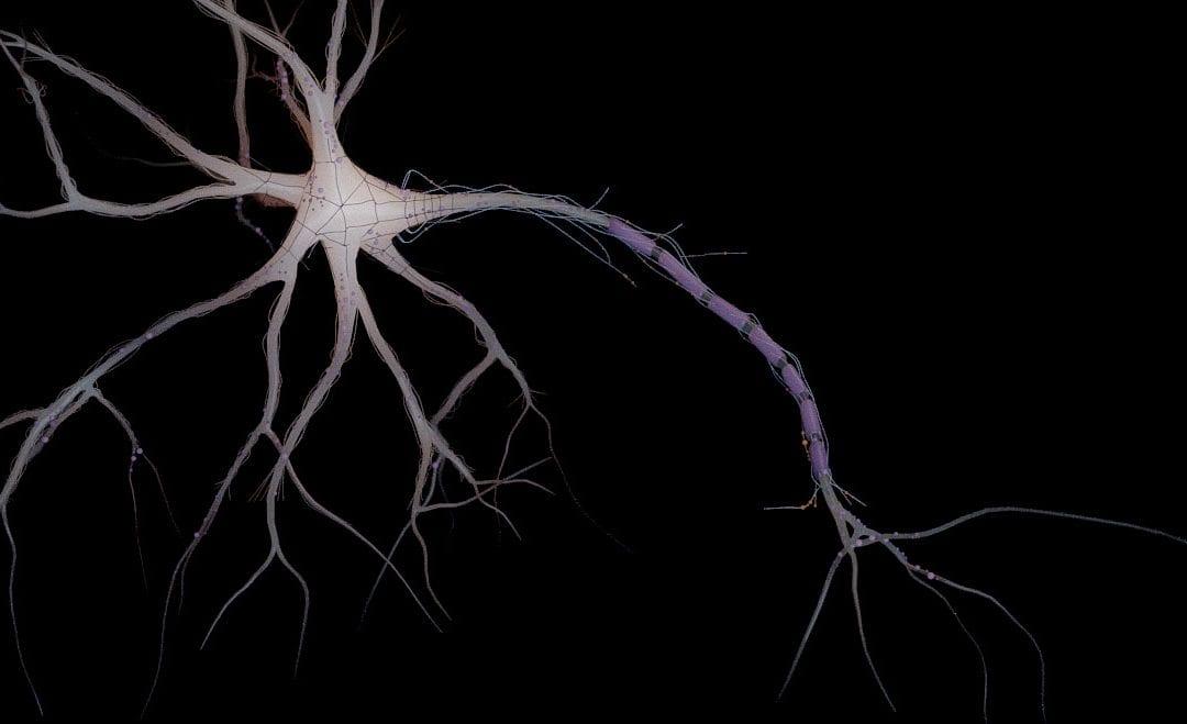 Render 3D de dibujo médico neuronal