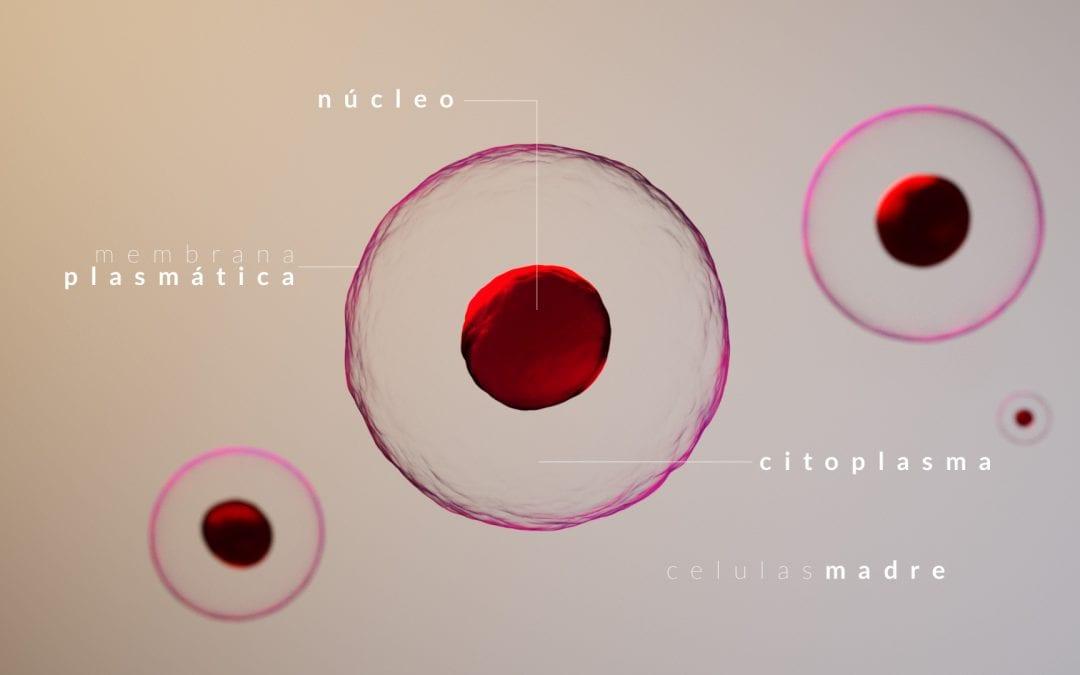 Render 3D de dibujo médico Celula.